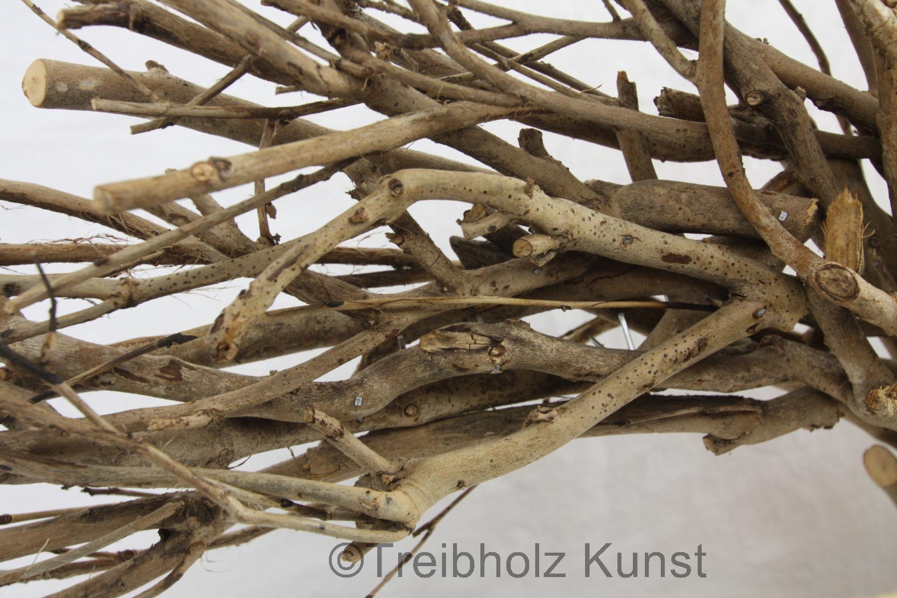 Baum äste Deko deko ast baum treibholz bodensee de einmaliges holz bilder